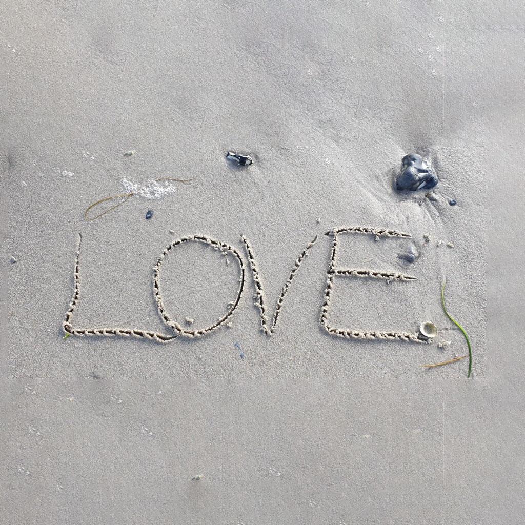 FRIT FLOW billede LOVE