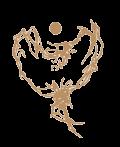 logo-stjerneenergi-png-osqyewkfrjfxr5bynp9jn4igh80bv8mh34qbysaj7i