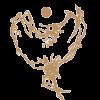 logo-stjerneenergi-png.png